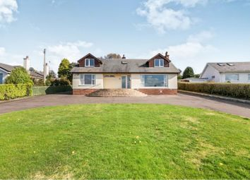 Thumbnail 4 bed detached bungalow for sale in Larch Hill, Holywood