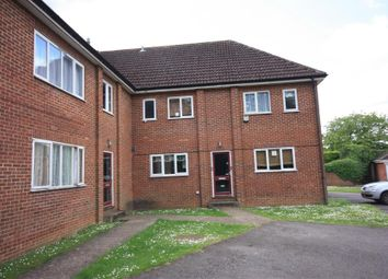 Thumbnail Studio to rent in Cedars Court, The Cedars, Burpham, Guildford