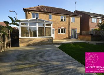 Thumbnail Detached house to rent in Windsor Drive, Thrapston, Northamptonshire