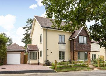 Thumbnail 5 bed detached house for sale in Bisley, Woking, Surrey