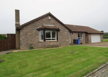Thumbnail 4 bed detached bungalow for sale in Quarryfields, Seahouses
