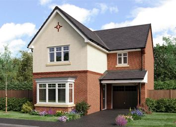 "Thumbnail 3 bedroom detached house for sale in ""The Malory"" at Sadberge Road, Middleton St. George, Darlington"