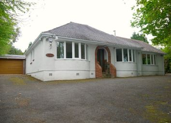 Thumbnail 3 bed bungalow to rent in West Winds Close, Waunarlwydd, Swansea