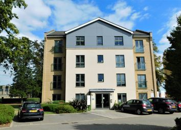 2 bed flat to rent in Pearce Court, Colchester CO2