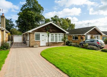 Thumbnail 3 bed detached bungalow for sale in The Manor Beeches, Dunnington, York