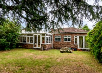 Thumbnail 3 bed bungalow to rent in Park View Road, Sutton Coldfield, West Midlands