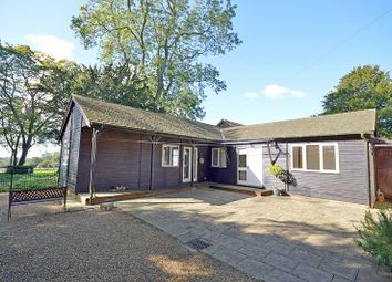 Thumbnail 2 bed detached bungalow to rent in Upmarden House Pitlands Lane, Up Marden, Chichester
