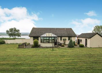 Thumbnail 3 bedroom bungalow for sale in Balblair, Dingwall