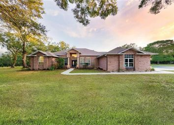 Thumbnail 4 bed property for sale in 11119 Serenity Oaks Lane, Thonotosassa, Florida, 11119, United States Of America