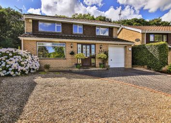 Thumbnail 4 bedroom detached house for sale in Glade Close, Coed Eva, Cwmbran