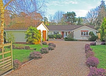 4 bed bungalow for sale in Higher Way, Harpford, Sidmouth EX10