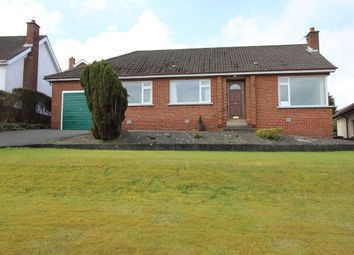 Thumbnail 3 bed bungalow for sale in Springhill Road, Bangor
