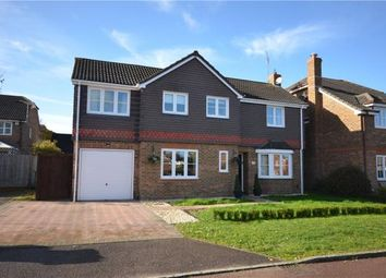 Thumbnail 4 bed detached house for sale in Park Lane, Binfield, Bracknell