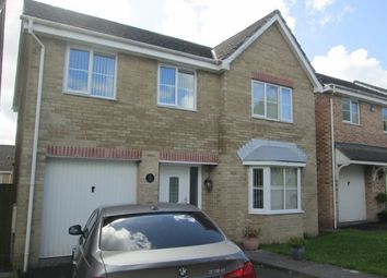 Thumbnail 4 bed detached house to rent in Cedar Court, Tregof Village