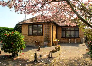 Thumbnail 3 bed bungalow for sale in Harold Road, Stubbington, Fareham