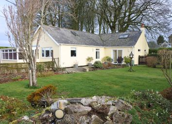 Thumbnail 2 bed detached bungalow for sale in Mere, Warminster