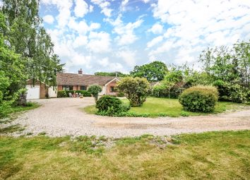 Thumbnail 4 bed detached bungalow to rent in Ball Hill, Newbury