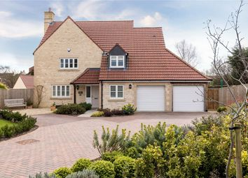 Thumbnail 4 bedroom detached house for sale in Dane Lodge, 30A The Mead, Rode, Somerset