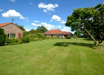 Thumbnail 4 bed detached bungalow for sale in East Carleton, Norwich, Norfolk