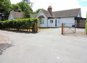 Thumbnail 3 bed detached bungalow to rent in Shalford, Braintree