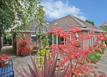 Thumbnail 3 bed detached bungalow for sale in Greenways Road, Brockenhurst