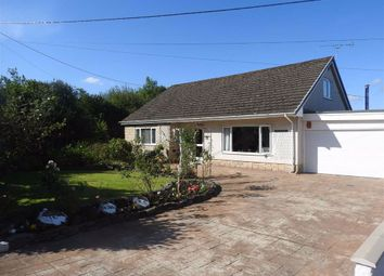 Thumbnail 4 bed detached bungalow for sale in Penybryn, Cardigan