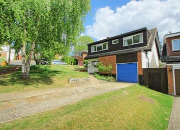 Thumbnail 4 bed detached house for sale in Millfield, Wadesmill, Ware
