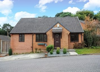 Thumbnail 4 bed detached bungalow for sale in Bluebell Rise, Lightwater