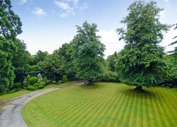 Thumbnail 6 bed detached house to rent in Woburn Hill, Addlestone