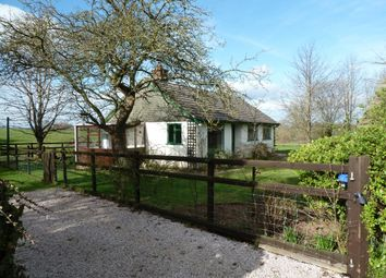 Thumbnail 3 bedroom bungalow to rent in Aylesbeare, Exeter