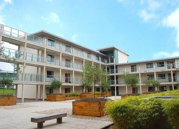1 bed flat to rent in Rollason Way, Brentwood CM14