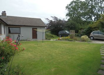Thumbnail 4 bed detached bungalow for sale in Cross Inn, Nr New Quay