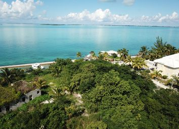 Thumbnail Land for sale in The Bluff, The Bahamas