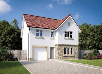 "Thumbnail 4 bedroom detached house for sale in ""The Bargower"" at Hamilton Road, Larbert"