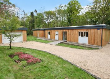 Thumbnail 4 bed detached bungalow for sale in Woods Green, Wadhurst