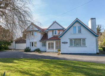 Thumbnail 3 bed detached house for sale in Chestnut Avenue, Lowestoft