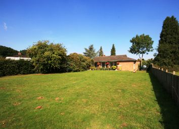 Thumbnail 4 bed semi-detached bungalow to rent in Nuneham Courtenay, Oxford