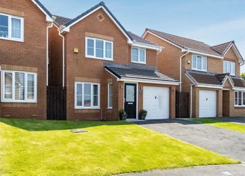 Thumbnail 3 bed detached house for sale in Cinnamon Drive, Trimdon Station, Durham