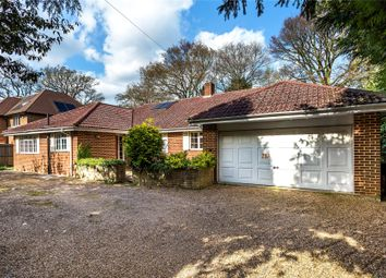 Thumbnail 4 bed detached bungalow for sale in Woking, Surrey