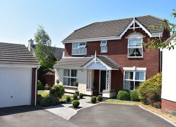 Thumbnail 4 bed detached house for sale in Llys Bronwydd, Broadlands, Bridgend.
