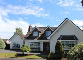 Thumbnail 4 bed detached house for sale in Crieve Court, Newry