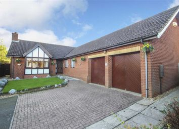 Thumbnail 4 bed detached bungalow to rent in Mortons Fork, Blue Bridge, Milton Keynes