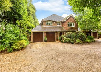 Thumbnail 4 bedroom detached house for sale in Sandisplatt Road, Maidenhead, Berkshire