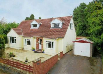 Thumbnail 3 bedroom detached house for sale in Hawsley, Lydbrook