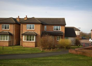 Thumbnail 4 bed detached house to rent in 88 Rivington Park, Appleby-In-Westmorland, Cumbria