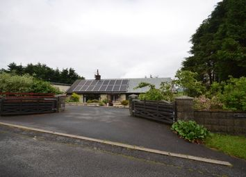 Thumbnail 4 bed detached bungalow for sale in Devils Bridge, Aberystwyth