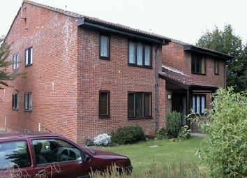Thumbnail  Studio to rent in Trenear Close, Horsham