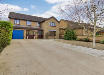 Thumbnail 5 bedroom detached house for sale in Witchford, Ely
