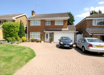 Thumbnail 4 bed detached house to rent in Old Bedford Road, Luton