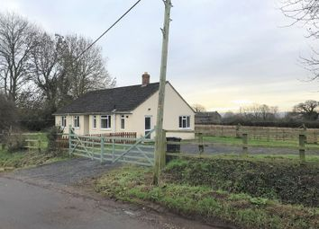 Thumbnail 3 bed detached bungalow to rent in Kingston St. Mary, Taunton